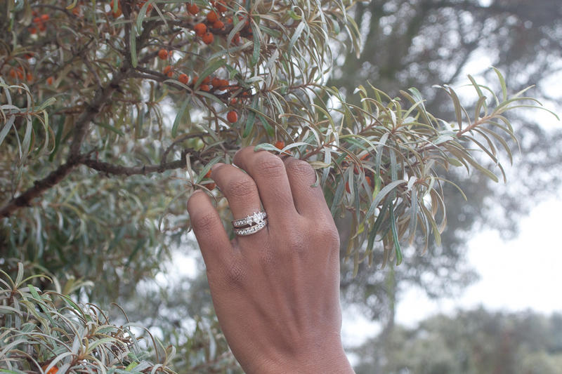Plucking Sea-buckthorn